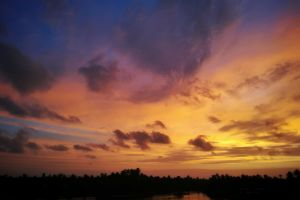 wallpaper red sky sunset beach kerala #outdoorchallenge trees landscape beauty in nature india reflection