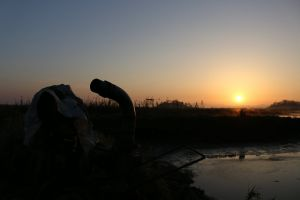 water pump nature dawn