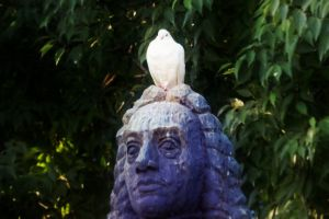 white bird dove sitting on a statue head tree