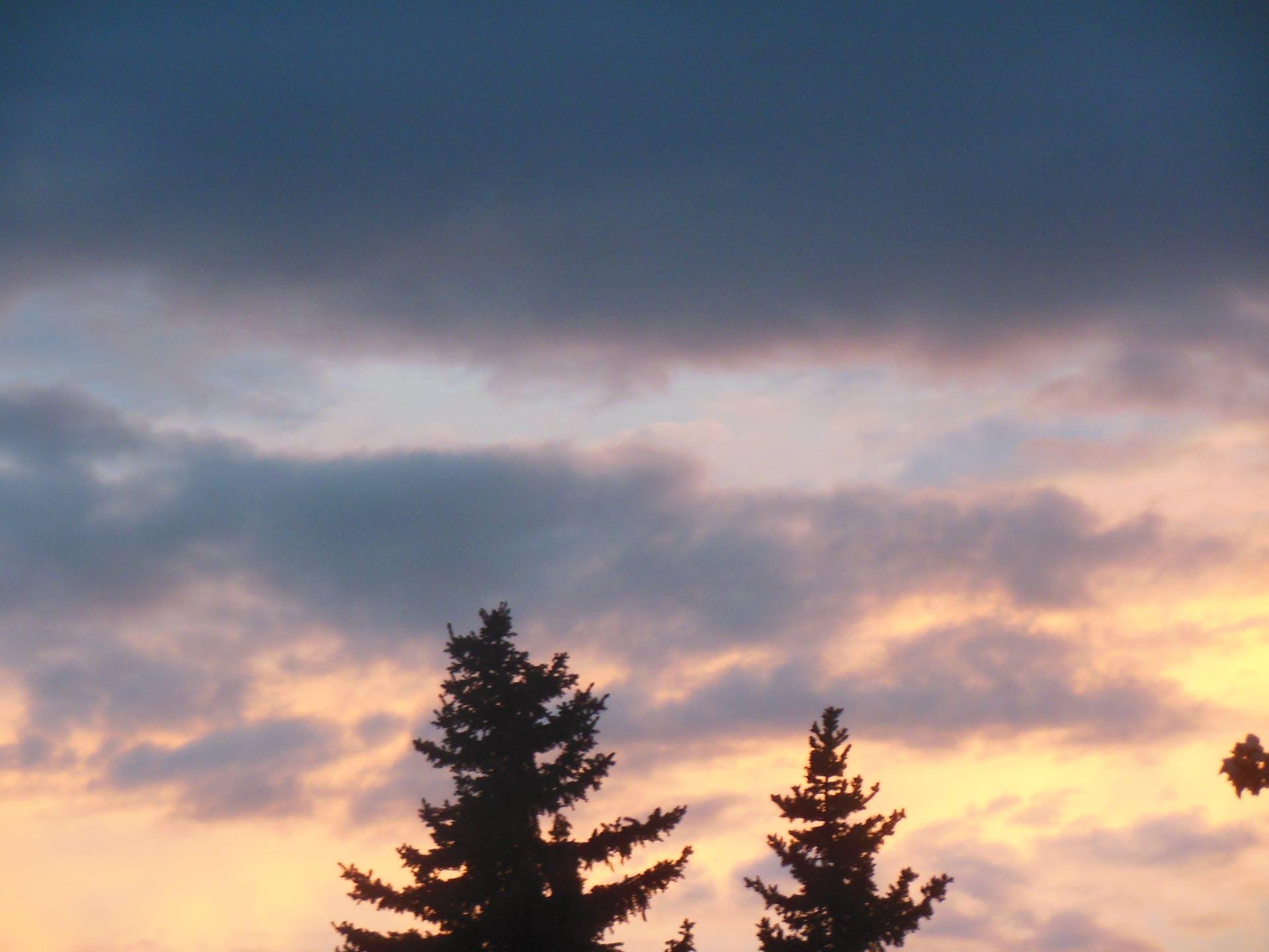 colors sunrise trees city views 6am