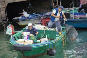 asia fish driving live boat hong kong ship ocean people fishing
