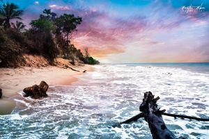 beach landscape sky ocean