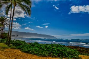 beautiful landscape coast green clouds background waves breaking waves palm trees hawaii
