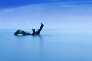 blue sea sea minimalistic by the sea deep sea driftwood minimalissm calm sea minimalist