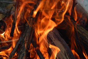 branches twigs burn fires burning flame bonfire dry light outdoor