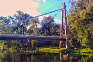 bridge oradea summer green