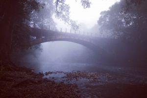 bridge winter dawn