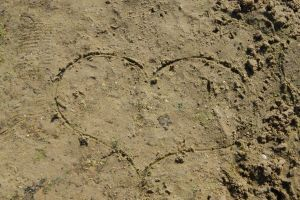 brown soil background barren dirt grunge texture detail nature dry