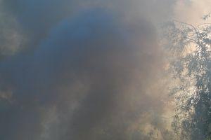 burn nature flame burning huge bonfire picnic survival wood ritual
