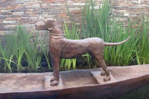 cape town wine farm dog experience statue mountain nature art sunset
