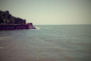 coastline summer vibes arabian sea sinquerim beach goa india beach