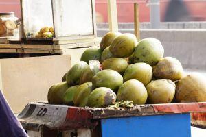 coconut photography canon street street photo