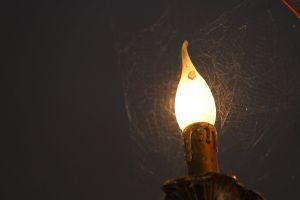 daylight bulb lamp
