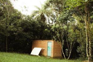 daylight lawn landscape trees grass green scenic growth bricks garden