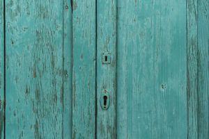 detail wood hardwood texture door green