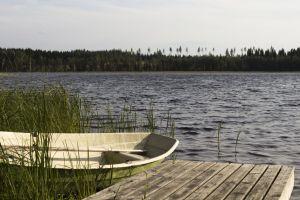 dock pier recreation wooden reed tree scenic daylight boat leisure