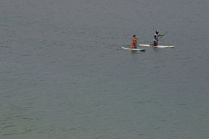 durban nature cruise ocean south africa waves paddleboard people harbour