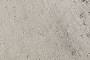 earth barren surface detail desert dry background mud natural backdrop