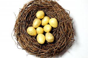 egg eggs gold easter white cute nest
