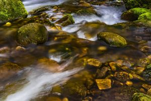 environment rocks mossy rocks stones stream scenic flow long exposure nature moss