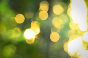 evening green swirly bokeh yellow wallpaper nikon greenish