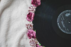 flowers colors roses record