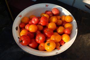 fresh garden fruits green pepper fruit tomato raw market assorted