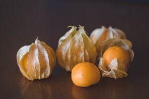 fruit round out health pasture confection close-up fresh harvest farming nutrition