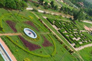 garden maze park plants