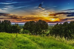 grass weather mood grasses clouds form romantic nature mood setting sun clouds sunset