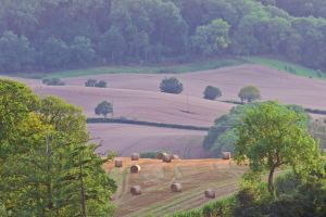 hay bales english countryside fields trees