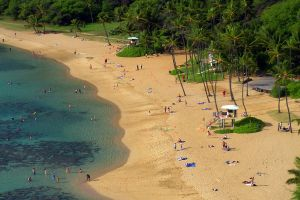 high angle shot ocean nature landscape people seashore water beach recreation tropical