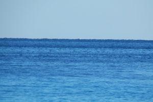 holiday sharm outdoor palm resort water sea sheikh egypt blue