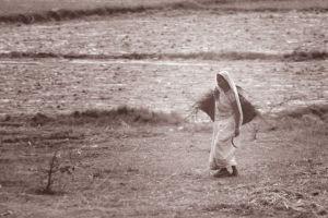 hot weather sunlight free download dreamlens_production widow woman cultivation woman farmer needy women sun light famous