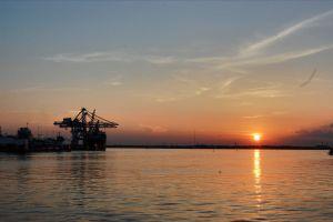 industry water cranes sun ocean harbour cranes