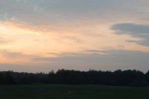 landscape nature sunlight summer farm sky tree sunrise orange pasture