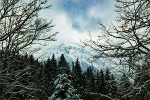 landscape woods clouds snow snow capped mountains snowy weather winter landscape frozen branches