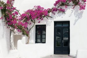 leisure architecture flowers trees world travel white wall grecian architecture black doors