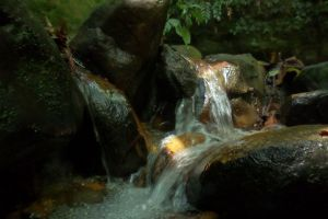 light rock water stream mother nature forest