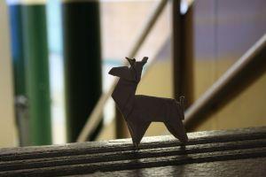 light wood indoors room origami daylight