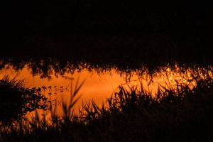 minimalism photography free wallpaper sunset landscape minimalist