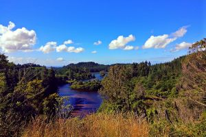 nature daylight scenic water