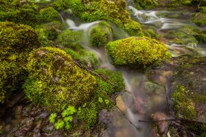 nature rocks water bulgaria