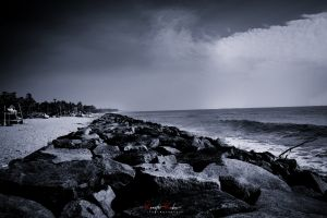 ocean daydreaming black and white landscape black night