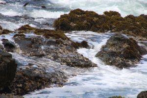 ocean waves sea background rocks nature