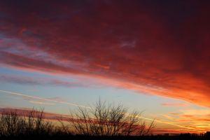 orange sky sky red sky early morning