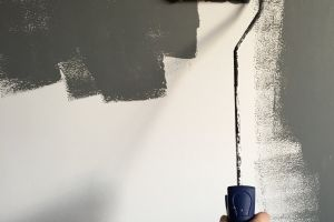 renovation painting paint wall roller daylight indoors wet person hand