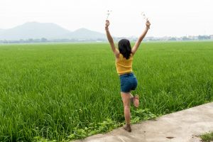 rice girl chinese girl in rice field green crops china field
