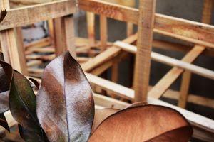 rough wood art dried leaves wood box