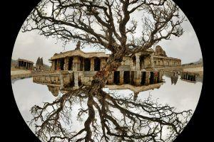 ruins tree reflection